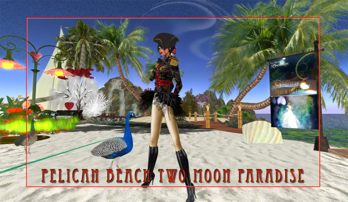 Pelican Beach is Two Moon Paradise's starting location for fun and music