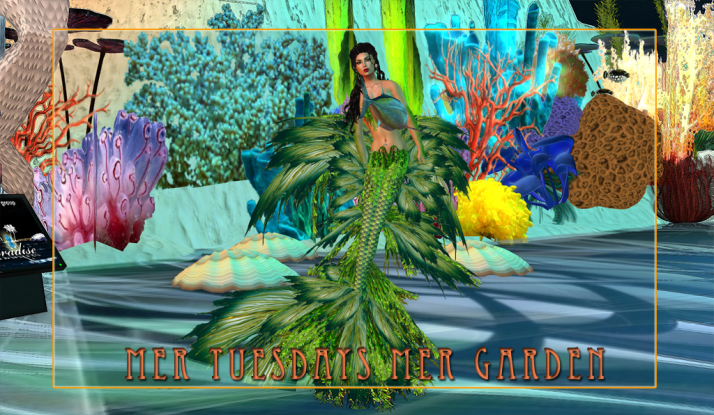 Tuesday & Wednesday are Mer Event Days at Two Moon Paradise Mer Garden
