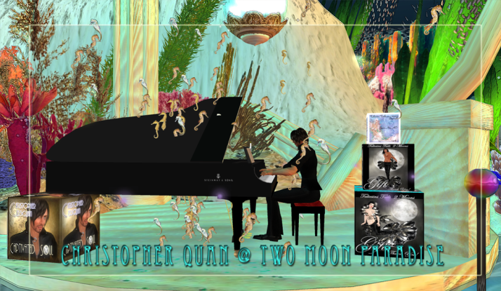 Christopher Quan brings wonderful music under the sea at Mer Garden Two Moon Paradise on Wednesday.