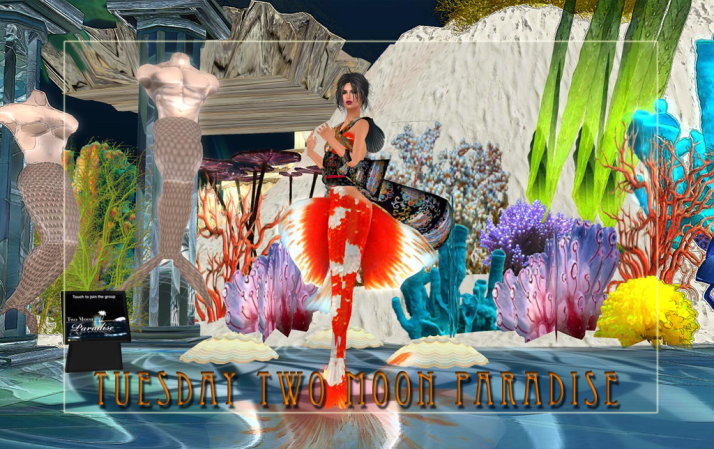 Mer events on Tuesdays and Wednesdays at the Mer Garden Two Moon Paradise