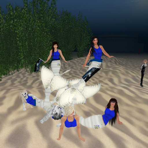 Two Moon Paradise 2013 Mer Olympic Team