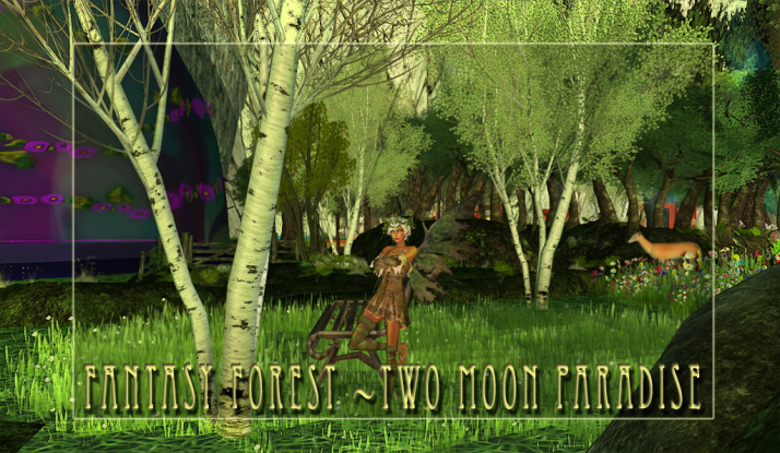 Come visit the Fantasy Forest at Two Moon Paradise!