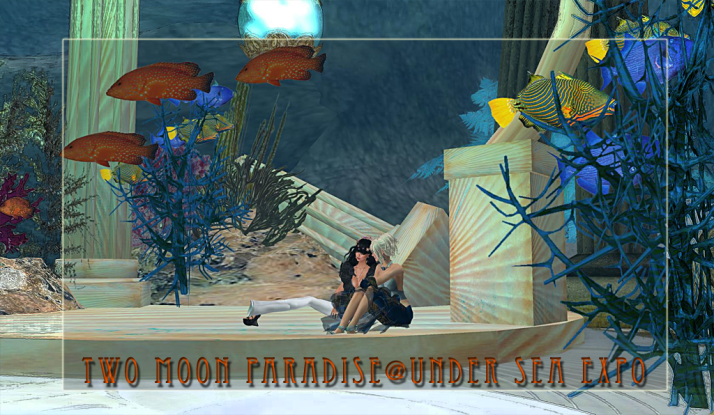 Two Moon Paradise has a display at the Under The Sea Expo June 20th ~ June 26th