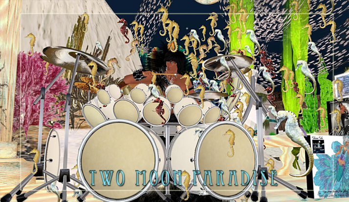 Drum-Mer Farr never knows where he will end up but always enjoys playing Tuesdays at Two Moon Paradise