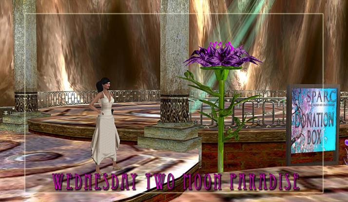 Lisa Brune Wednesday Two Moon Paradise