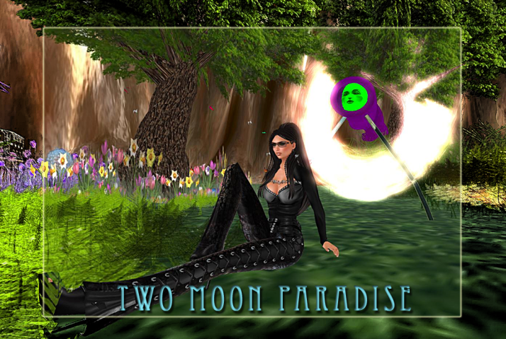 Relaxing in the Fantasy Forest at Two Moon Paradise