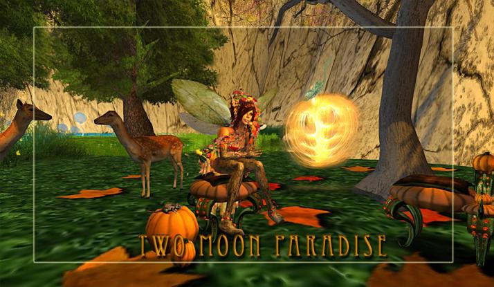 Argus wonders when The Great Pumpkin will arrive;)