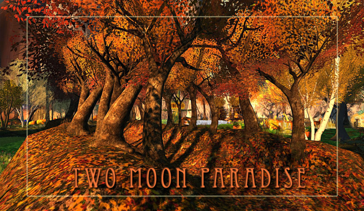 Fall has come to Fantasy Forest at Two Moon Paradise with pumpkins and leaves and colors galore. Join us for the season