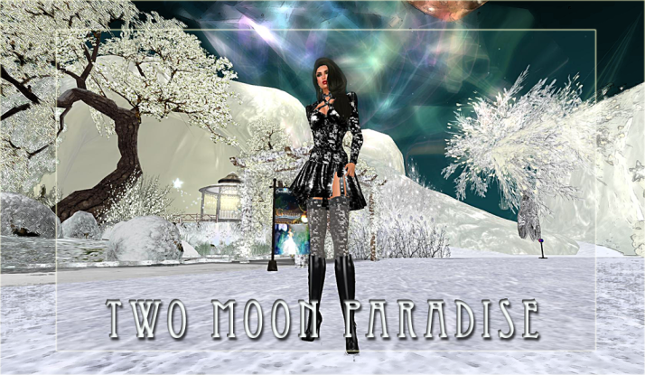 New  ~a Cross Country Ski trail at Two Moon Paradise