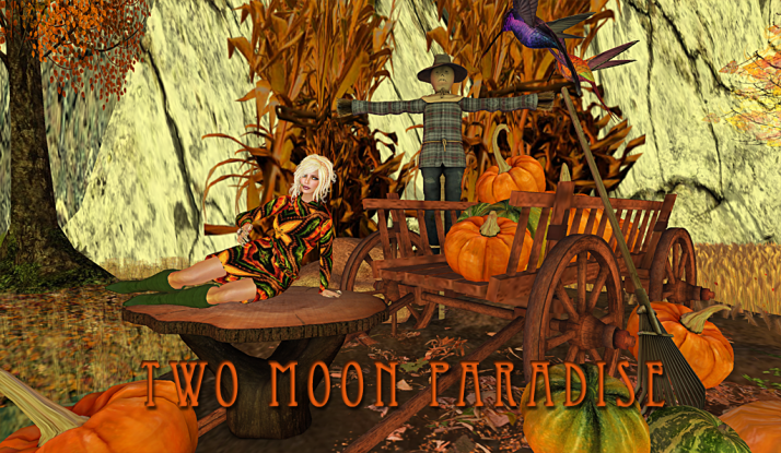 Fridays come explore Two Moon Paradise tp around from under sea to outer space and visit the Fantasy Forest Fall area