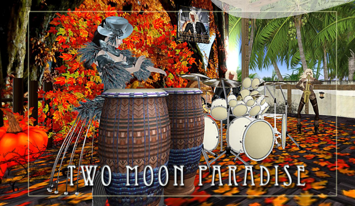Farr and Robots plus Kellie and The Funky Feats are happening on Tuesdays at Two Moon Paradise