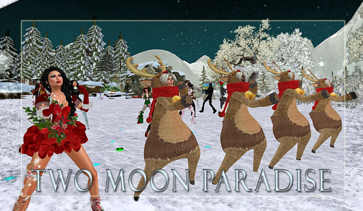 Thursday Contest night Shiran and her Reindeer Chorus line with winners Farr and Julian at Two Moon Paradise
