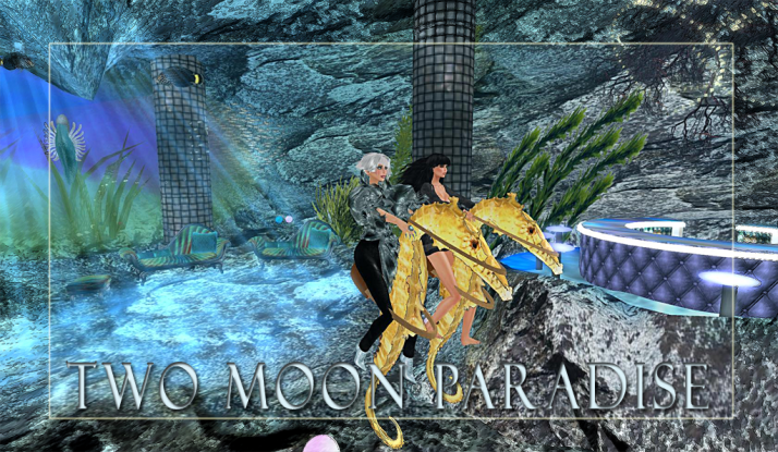Two Moon Paradise Mer Area Seahorse Ride... four Mer Events this week with a Contest on Wednesday
