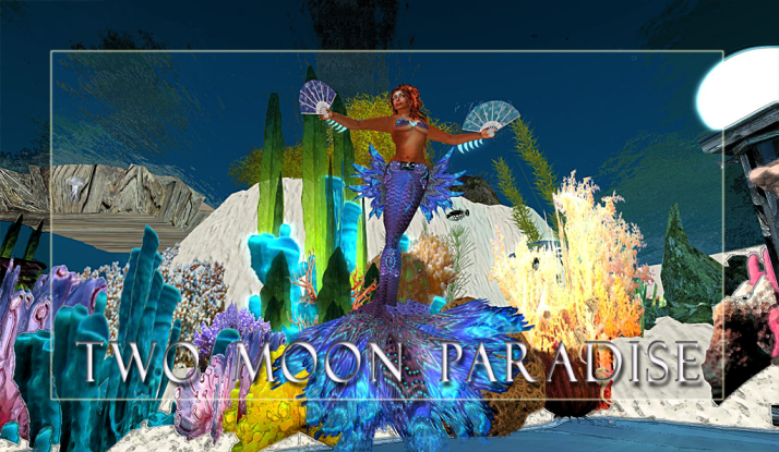 Tuesday Mer Dance and then Farr and the Robots plus the Funky Feats at Two Moon Paradise