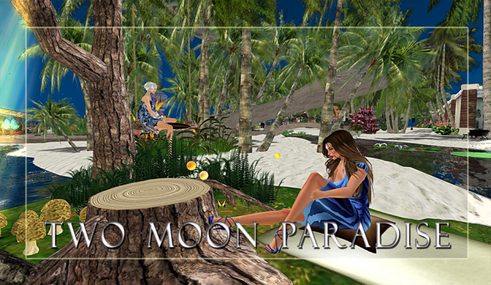 Join Shiran Sabra and The Two Moon Paradise Family for events and relaxation in a beautiful setting