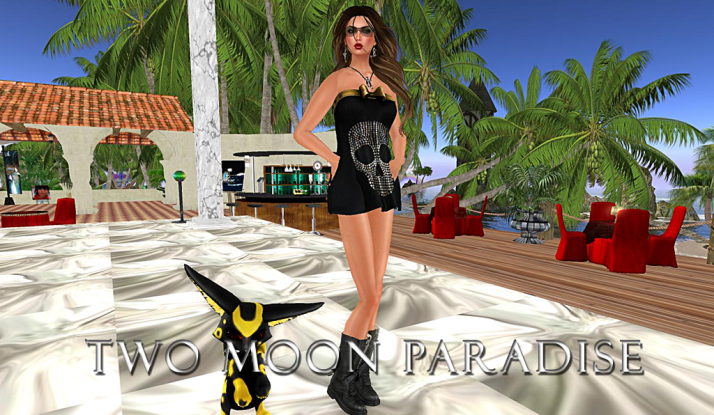 Join Farr and the Two Moon Paradise family Sundays noon until 2