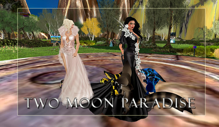 Sundays Music Madness with Farrokh Vavoom Two Moon Paradise noon until 2