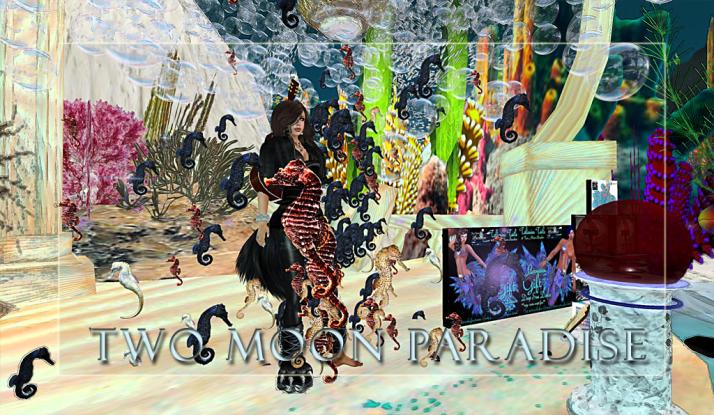 Gina Stella at Mer Garden Two Moon Paradise Tuesdays