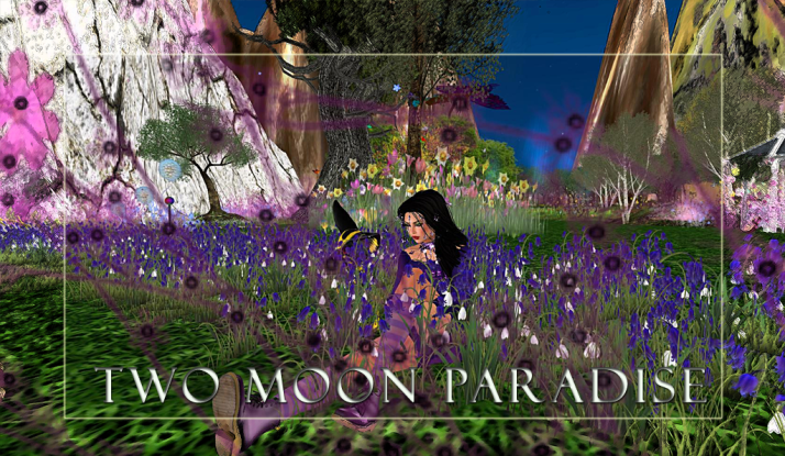 Join Shiran Sabra and the Two Moon Paradise family and discover Spring in Fantasy Forest