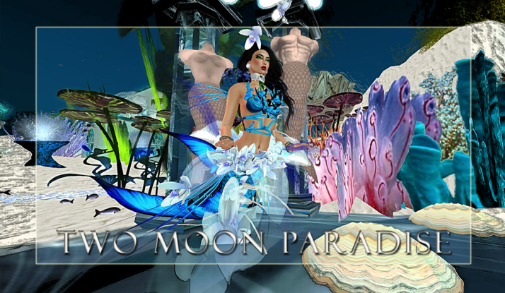 Join Shiran Sabra and The Two Moon Paradise Family for music and fun