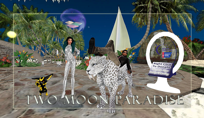 AM Quar and Max Kleene Saturdays at Two Moon Paradise ~ get ready to be a party animal ;)