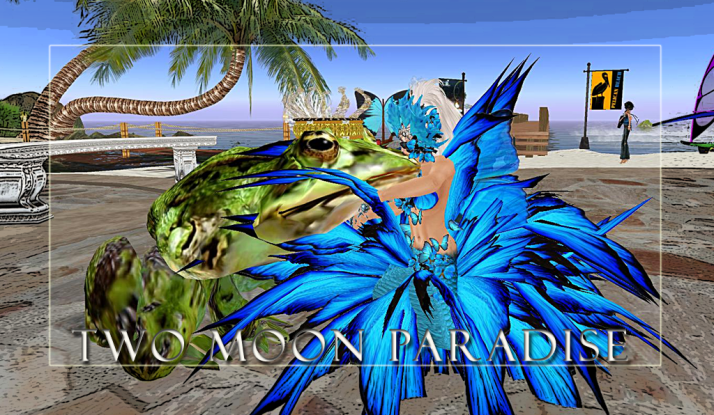 Come visit Two Moon Paradise you never know when your prince may show up:)