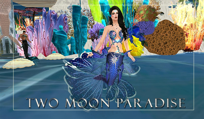 Mer Events on Tuesdays and Wednesdays at Two Moon Paradise