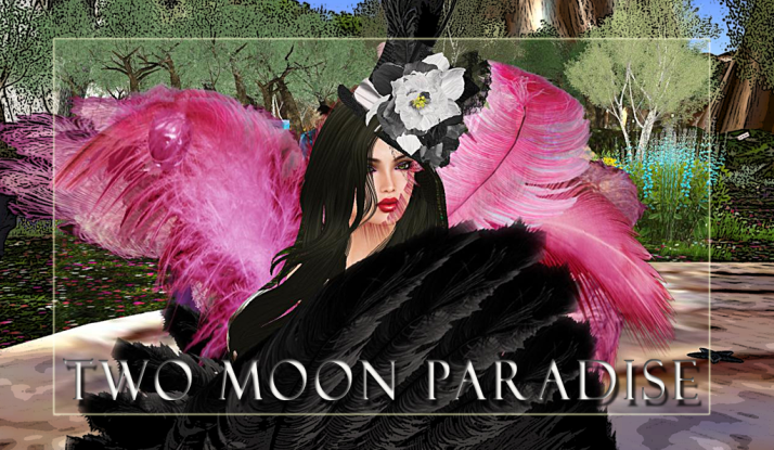 Join Shiran Sabra and The Two Moon Paradise Family for our weekly events.