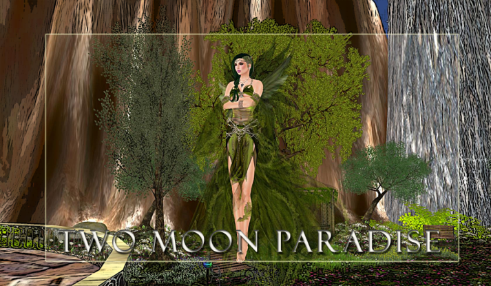 Join us at Two Moon Paradise for Live Music and Themed Events