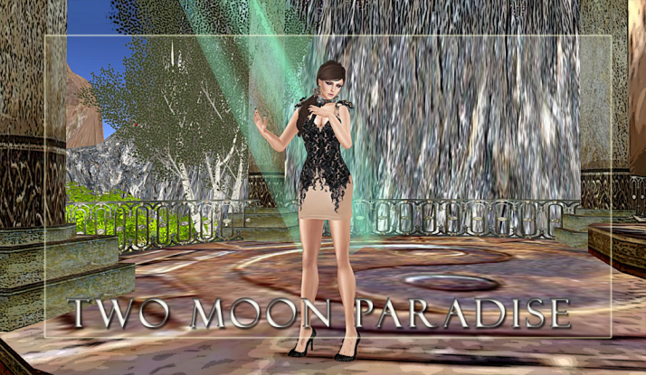 oin us at Two Moon Paradise for live music events and more Featuring Lisa Brune, CeCi Dover, Farrokh Vavoom, Gina Stella, Samm Qendra, AMForte Clarity, AM Quar, Max Kleene, Voodoo Shilton, Shay Sunnyside and The Funky Feats