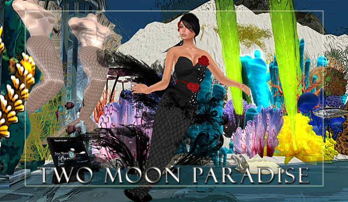 Along with live music Two Moon Paradise has themed contests for both Mers and Landwalkers weekly.