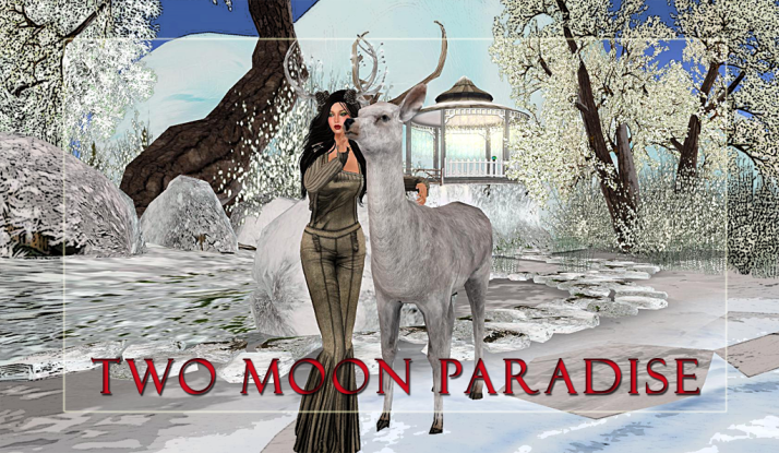 Join Shiran Sabra and The Two Moon Paradise Family for music and events  :)