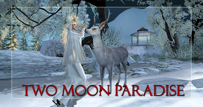 Join us at Two Moon Paradise for live music events and more Featuring  Lisa Brune, CeCi Dover, Farrokh Vavoom, Samm Qendra, AMForte Clarity, AM Quar, Max Kleene, Russell Eponym, Shay Sunnyside and The Funky Feats