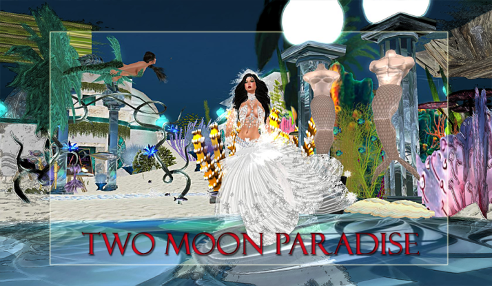 Join us at Two Moon Paradise for live music events and more Featuring  Lisa Brune, CeCi Dover, Farrokh Vavoom, Samm Qendra, AMForte Clarity, AM Quar, Max Kleene, Russell Eponym, Voodoo Shilton, Shay Sunnyside and The Funky Feats