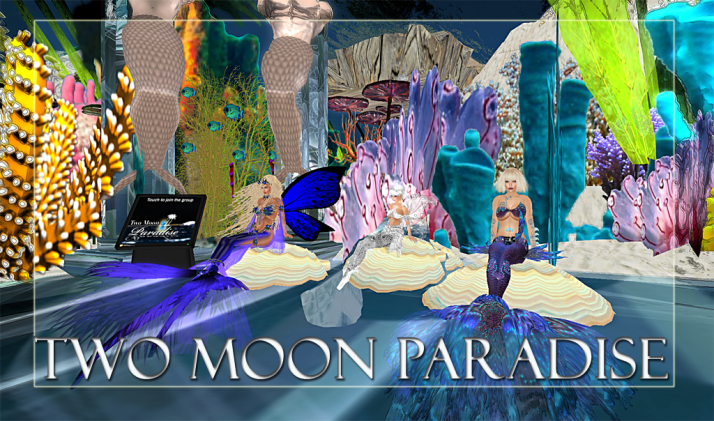 Winners Daisy, Bella and LouLou   Along with live music Two Moon Paradise has themed contests for both Mers and Landwalkers weekly. Come Explore The New Mer Cave Area