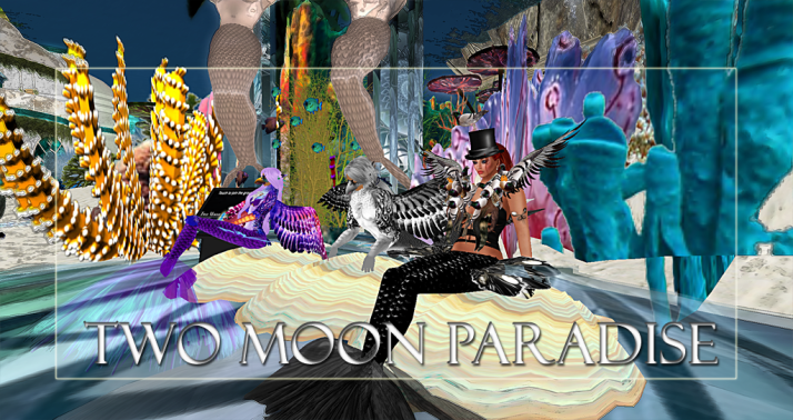 Winners Xenobia, Balinor and DeeDee Two Moon Paradise has themed contests for both Mers and Landwalkers weekly. Come Explore The New Mer Cave Area