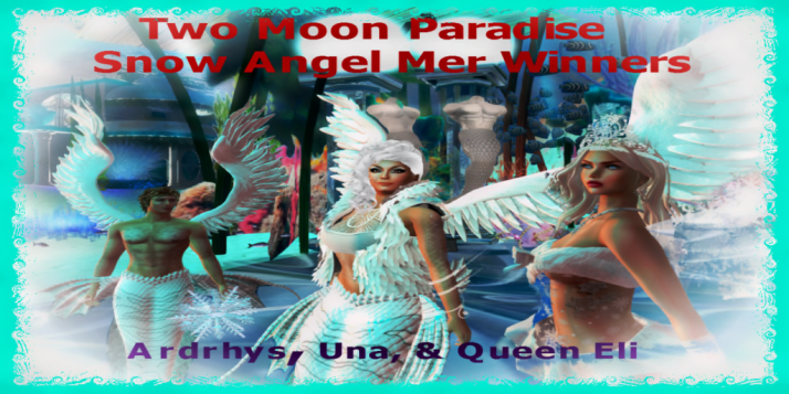 Ardrhys Una Queen Eli Snow Angel Mer Winners 1-10-18 2